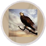 Osprey Tree Round Beach Towel