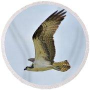 Osprey Upswing Round Beach Towel