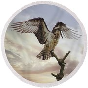 Osprey Wing Spread Round Beach Towel