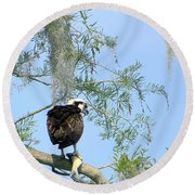 Osprey With A Fish Round Beach Towel by Chris Mercer