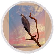 Osprey With Branch Round Beach Towel