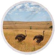 Ostrich Round Beach Towel