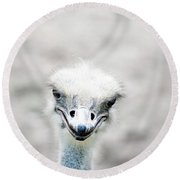 Ostrich Round Beach Towel