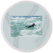 Round Beach Towel featuring the photograph Otter At Montana De Oro by Michael Rock