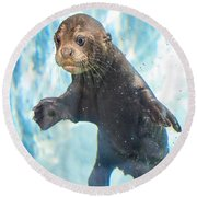 Otter Cuteness Round Beach Towel by Jamie Pham
