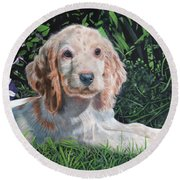 Our Archie Round Beach Towel