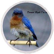 Our Own Mad Blue Bird Round Beach Towel