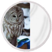 Round Beach Towel featuring the photograph Our Own Owl by Betty Pieper