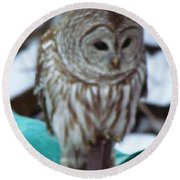 Our Own Owl Round Beach Towel by Betty Pieper
