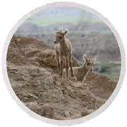 Out Exploring The Badlands Round Beach Towel