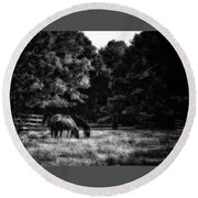 Out To Pasture Bw Round Beach Towel