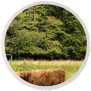 Round Beach Towel featuring the photograph Out To Pasture by Christi Kraft