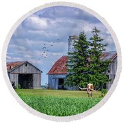 Round Beach Towel featuring the photograph Out To Pasture by Mary Timman
