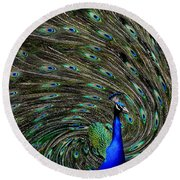 Outrageous Peacock Round Beach Towel