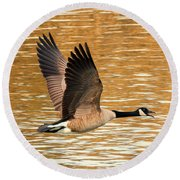 Over Golden Waters Round Beach Towel by Mike Dawson