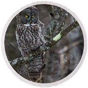Over There- Great Gray Owl Round Beach Towel