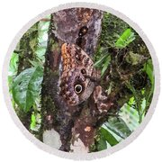 Owl Butterfly On A Tree Round Beach Towel