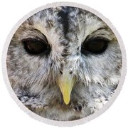 Round Beach Towel featuring the photograph Owl Eyes by William Selander