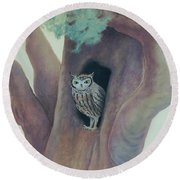 Owl In Tree Round Beach Towel