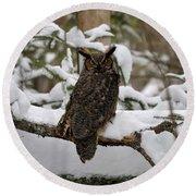 Owl Round Beach Towel by Jewels Blake Hamrick