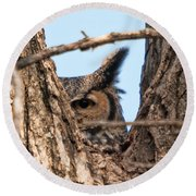 Owl Peek Round Beach Towel