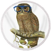 Owl Sitting On A Branch With Blue Glasses Round Beach Towel