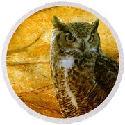 Owl Round Beach Towel by Teresa Zieba
