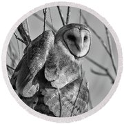 Owl Whites Round Beach Towel