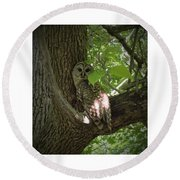 Owl With Leaf Round Beach Towel