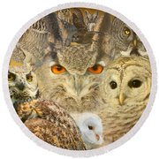 Owl You Need Is Love Round Beach Towel by Heather King