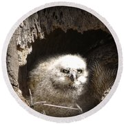 Owlet Round Beach Towel