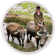 Oxen Day Off.cambodia Round Beach Towel