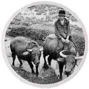 Round Beach Towel featuring the photograph Oxen Day Off.cambodia Bw by Jennie Breeze