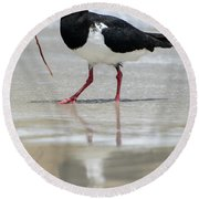 Oystercatcher 03 Round Beach Towel