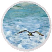 Pacific Golden Plover Flying Round Beach Towel
