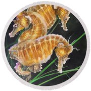 Pacific Lined Seahorse Trio Round Beach Towel