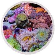 Pacific Ocean Reef Round Beach Towel