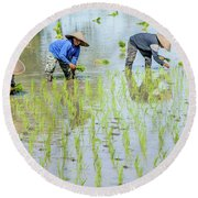 Paddy Field 1 Round Beach Towel by Werner Padarin