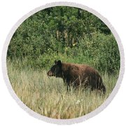Pagosa Momma Bear Round Beach Towel