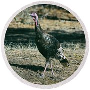 Pagosa Wild Turkey Round Beach Towel