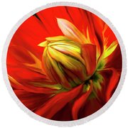 Painted Dahlia In Full Bloom Round Beach Towel