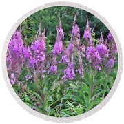 Painted Fireweed Round Beach Towel