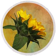 Round Beach Towel featuring the photograph Painted Golden Beauty by Judy Vincent