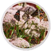 Painted Ladies Gathering Round Beach Towel