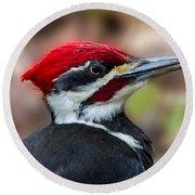 Painted Pileated Woodpecker Round Beach Towel by John Haldane