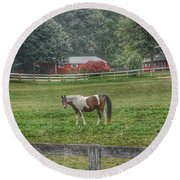 1005 - Painted Pony In Pasture Round Beach Towel