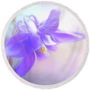 Painted Purple Columbine Round Beach Towel