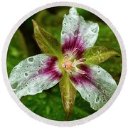 Painted Trillium With Raindrops Round Beach Towel