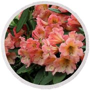 Painterly Rhododendron Grouping Round Beach Towel
