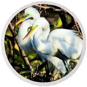 Pair Of Courting Great Egrets Round Beach Towel